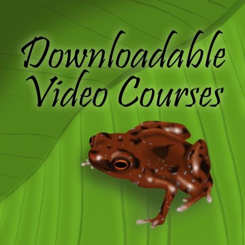 Downloadable Courses