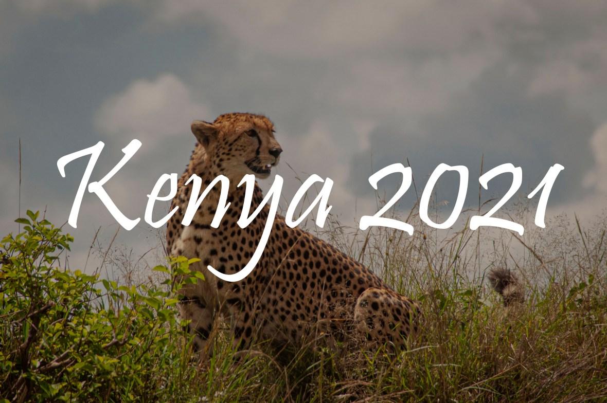 kenya 2021 portfolios banner