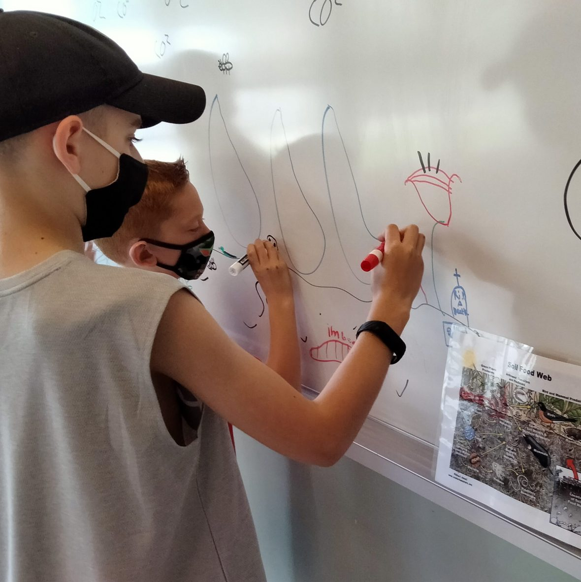 Kids design ecosystems in Enrichment Programs for Students