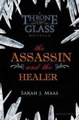 Celaenas Geschichte - The Assassin and the Healer