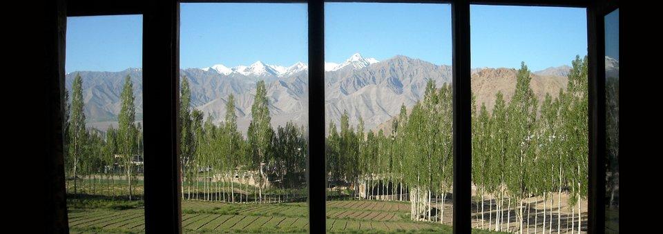 Monday De-stresser: Window Treatment
