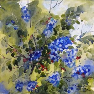 Berries in Blue