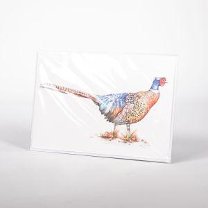 Bird Illustration