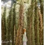 anni-leppala-in-the-park-reverse-2011-courtesy-photology-milano-225x300