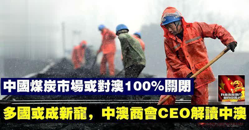 中煤炭市場或對澳100%關閉,多國或成新寵,中澳商會CEO解讀中澳