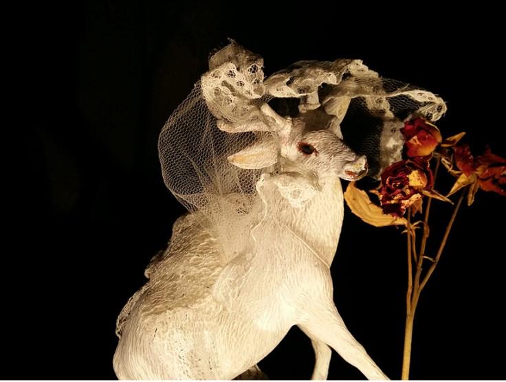 tdd_2018_Hochzeitstanz_5.jpg