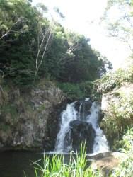 tAB - Kauai (13)