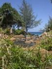 tAB - Kauai (21)