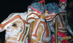 Doonooch Dancers, First People's gathering, Dinner Plain, April 2005.