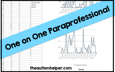 One on One Paraprofessionals
