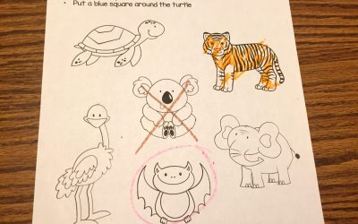 Free Zoo Themed Worksheets