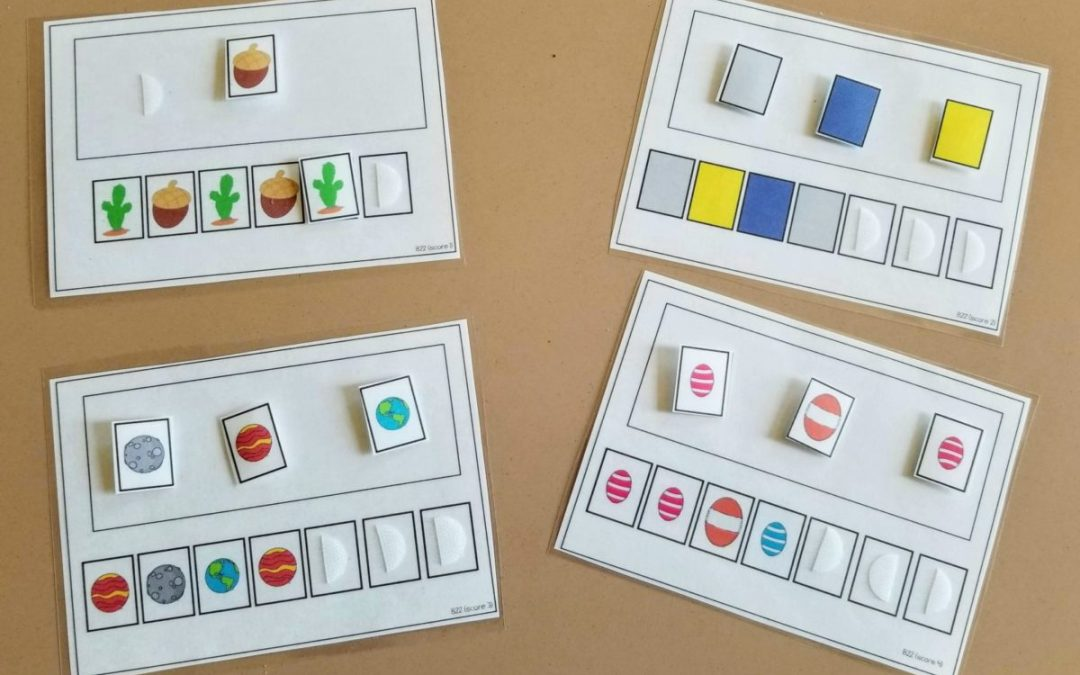 Focus on Five: Using ABLLS-R Aligned Task Cards in Your Classroom