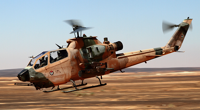 Exercise Eager Tiger 2014