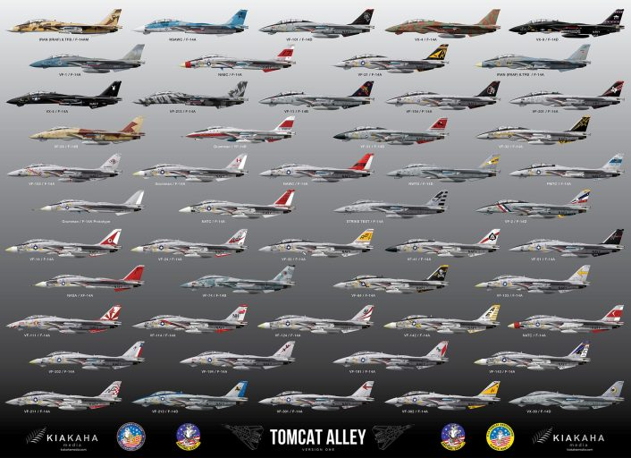 F-14 Tomcat Paint Schemes