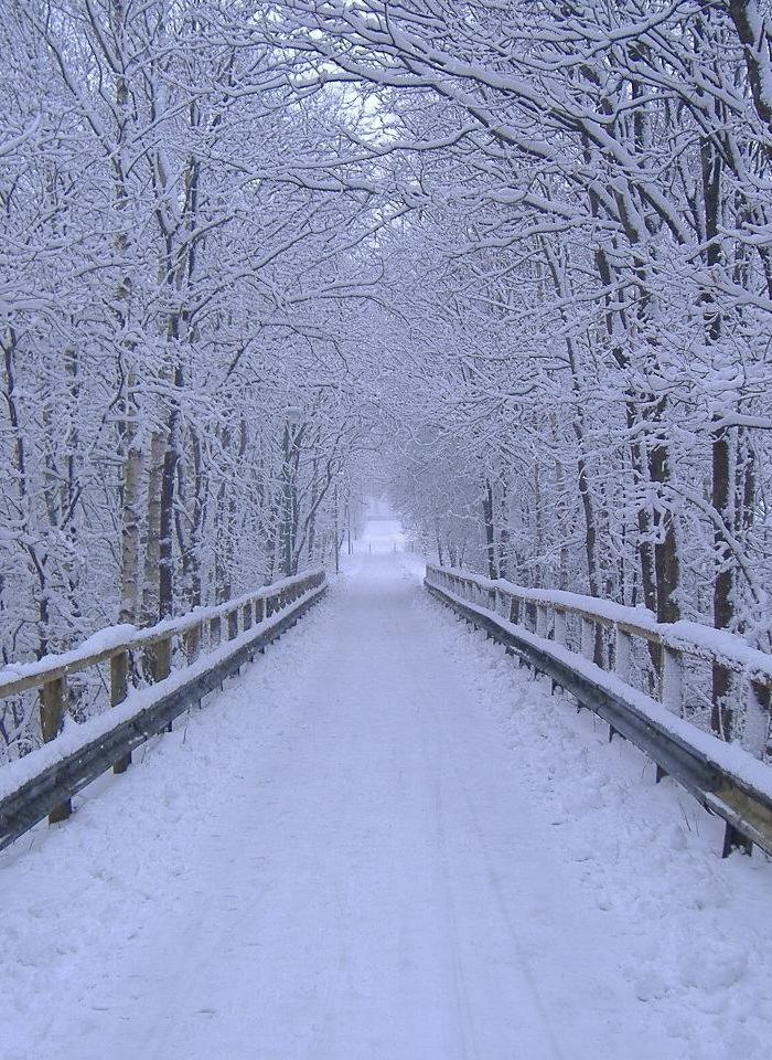 5 Tips for Beating the Winter Blues