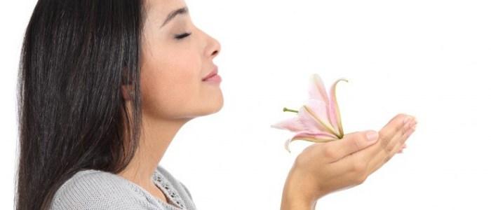 Breathwork   Health & Wellness