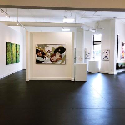 Botanica | Anne Neilson Fine Art Gallery