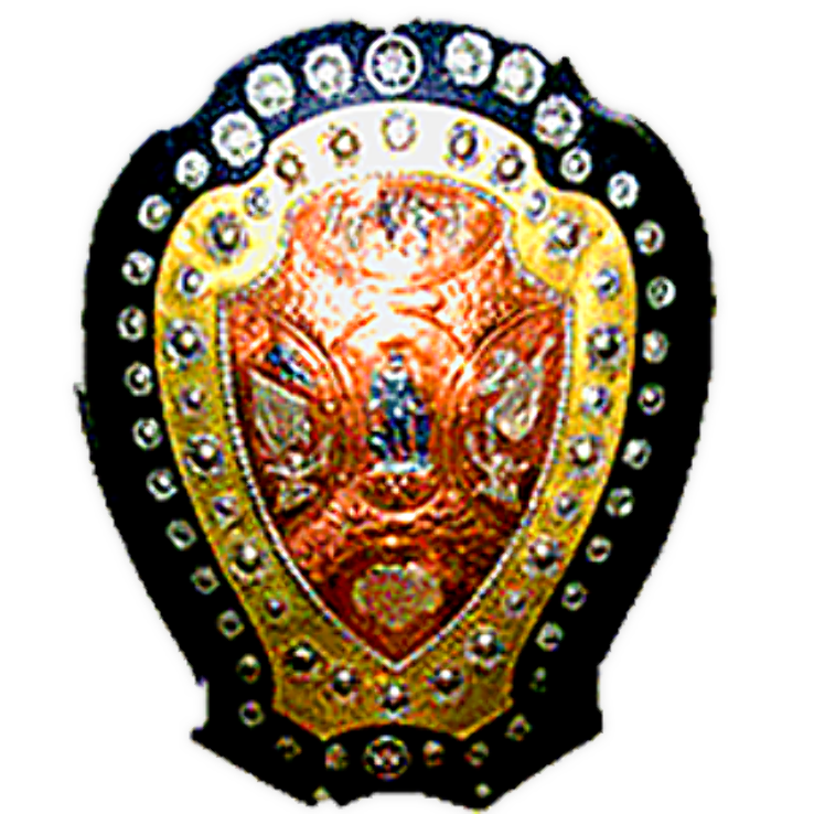 IFA Shield Logo