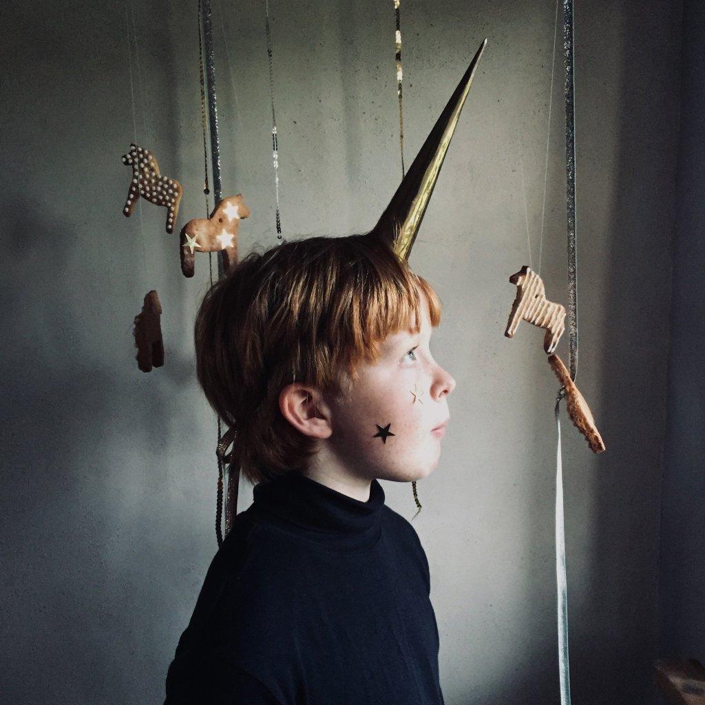 boy with a unicorn horn on his head