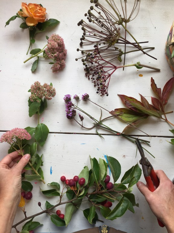 collecting foliage and flowers in September can yeeld some surprisingly colourful results