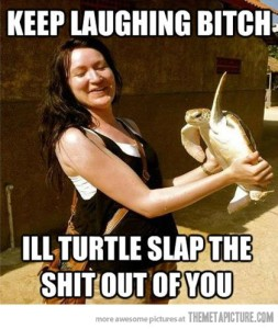 turtle slap meme
