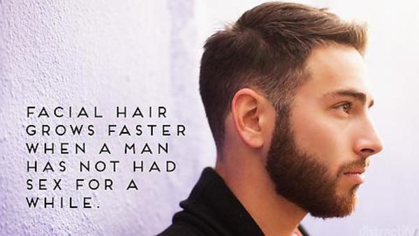 Beard Facts 1