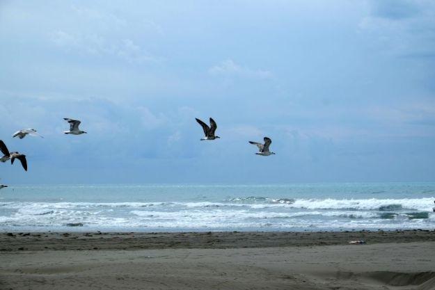 vialika-plazha