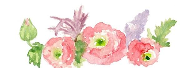 Розовый ранункулюс - рисунок, акварель