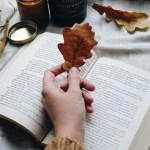Книжный клуб: 10 лучших книг, которые я прочла в 2014-ом