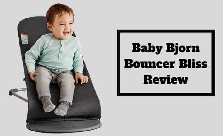 Baby Bjorn Bouncer Bliss
