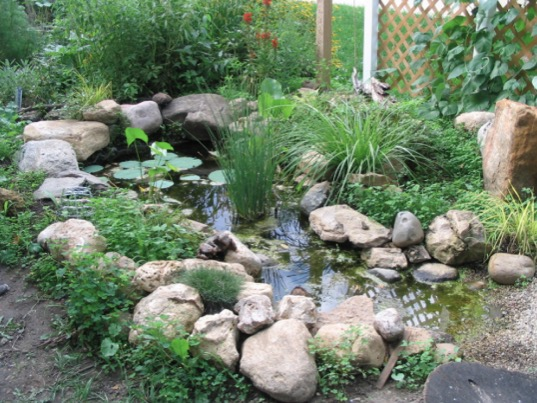 Wildlife Pond Liner