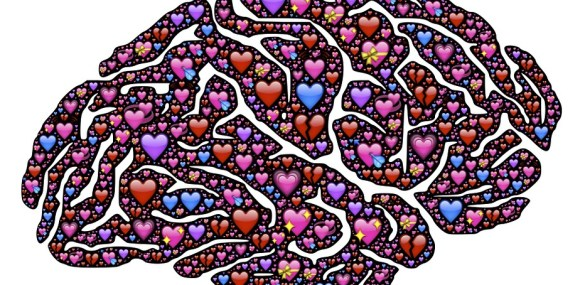 Neuroscience: it must be love on the brain
