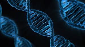 DNA - CRISPR