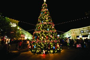 Christmas Tree Ceremony to take place in Library Square