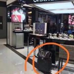 Fake Or Real Decoding The Chanel Vip Gift Bag Issue The Bag Hag Diaries