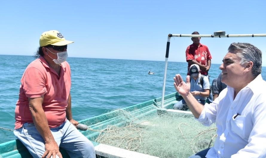 Conapesca trabaja para autorizar captura de 5 mil toneladas de curvina en San Felipe, afirma Ruiz Uribe