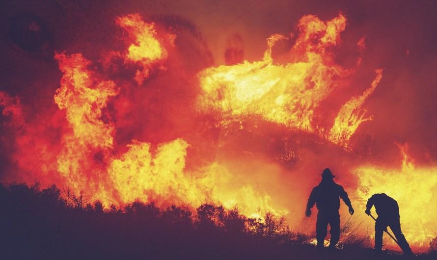 Pronostica CONAFOR etapa crítica en temporada 2021 de incendios forestales