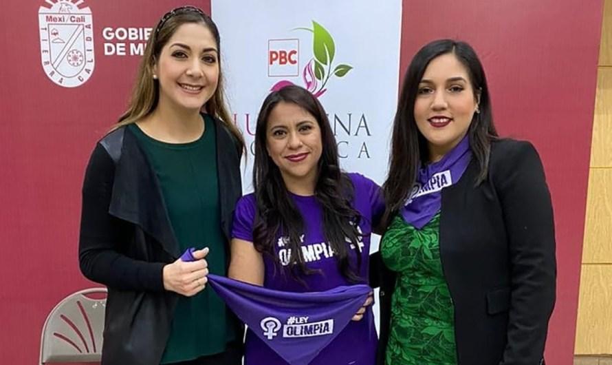 Defensoría Digital que garantice ciberseguridad en BC, propone Luz Elena Fonseca candidata PBC Distrito 03
