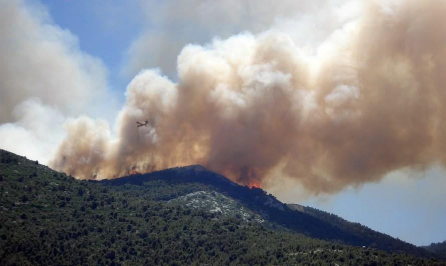 Arden 8 mil 500 hectáreas en diversos incendios forestales en México: CONAFOR