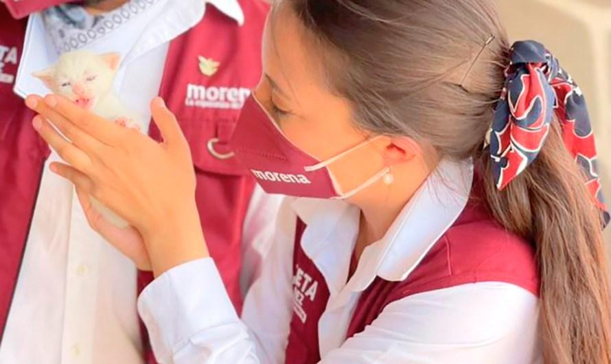 Sanciones severas contra el maltrato animal, propone diputada electa Julieta Ramírez