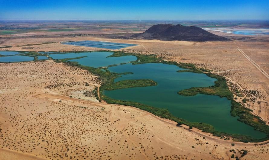 LA muerte de peces en río Hardy, por causa natural, planta Las Arenitas cumple con NOM de descargas