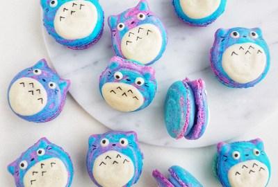 Totoro Galaxy Macarons