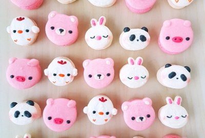 Animal Macarons by The Baking Experiment
