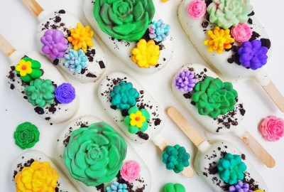 Succulent Cake Pops by The Baking Experiment