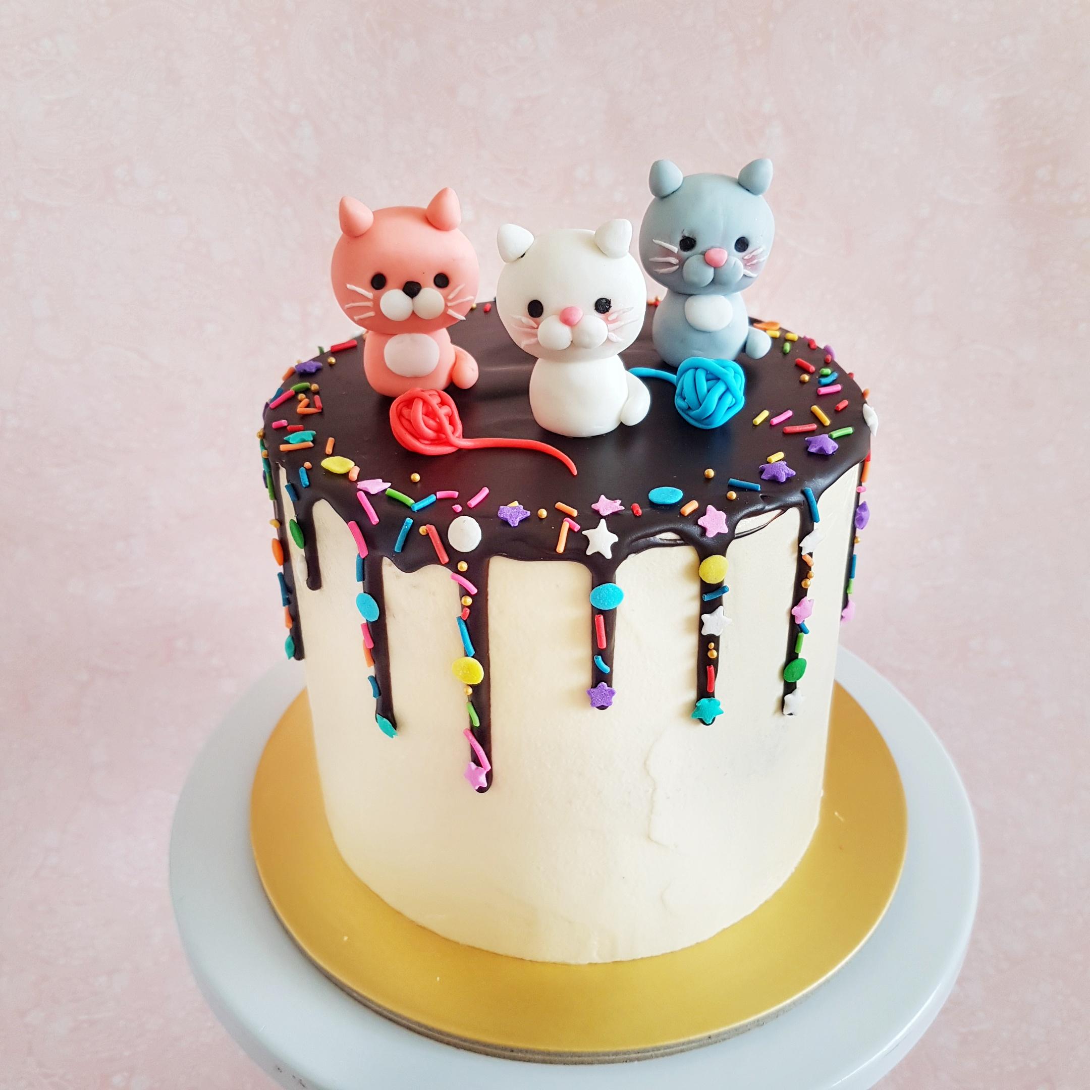 Cat Kitten Themed Cake