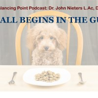 Weekly Podcast: It All Begins in the Gut