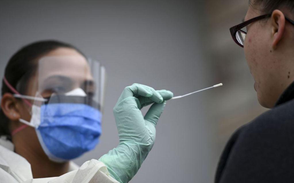 coronavirus test swab
