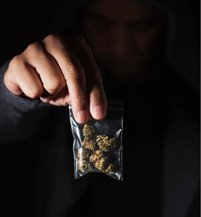 stock photo weed