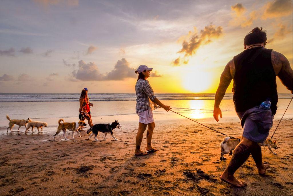 locals walking on beach