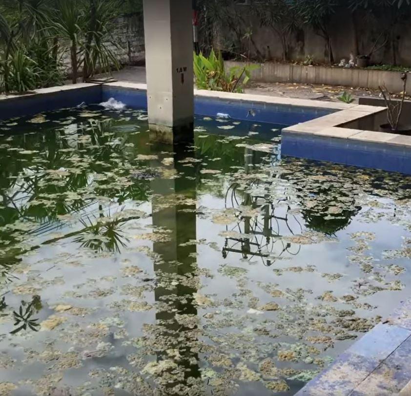 hotel pool empty